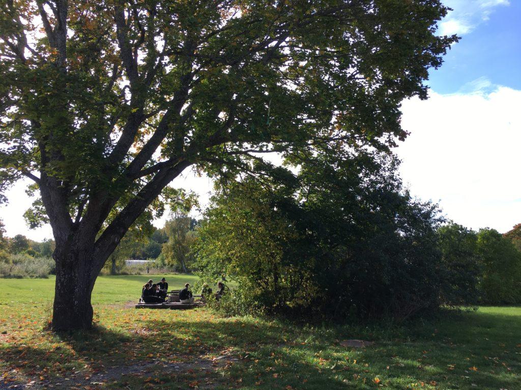 Deltagare på #digikollo 2016 samlade utomhus under ett stort träd